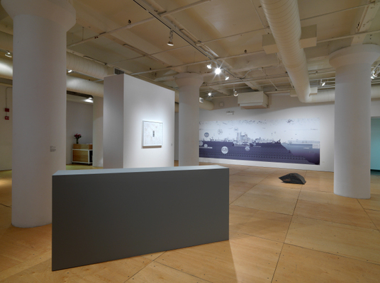 Ghost Nature, Gallery 400, Chicago, 2014, Installation view.