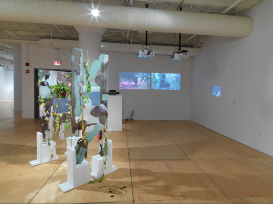 Ghost Nature, Gallery 400, Chicago, 2014 (installation view). Left: Heidi Norton, Anaphase Mutated, 2014, glass, resin, plants, paint, wood, 61 1/2 x 52 in. Right: Akosua Adoma Owusu, Anancy, 2012, video and slides, 2:00 min.