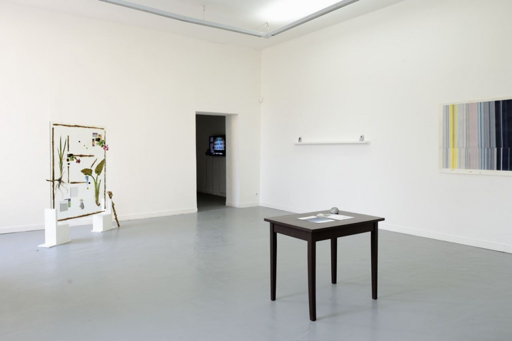 Ghost Nature, La Box, Bourges, 2014. Installation View.