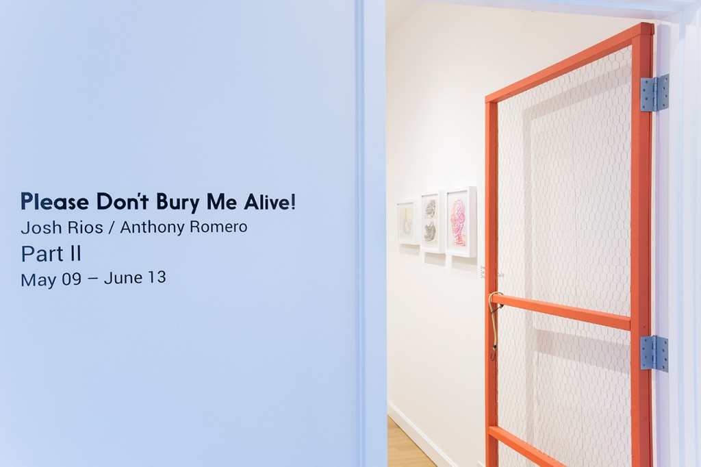 """Josh Rios & Anthony  Romero, """"Please Don't Bury Me Alive! Part Two"""",  Installation view, Sector 2337, 2015. Photo by Clare Britt."""