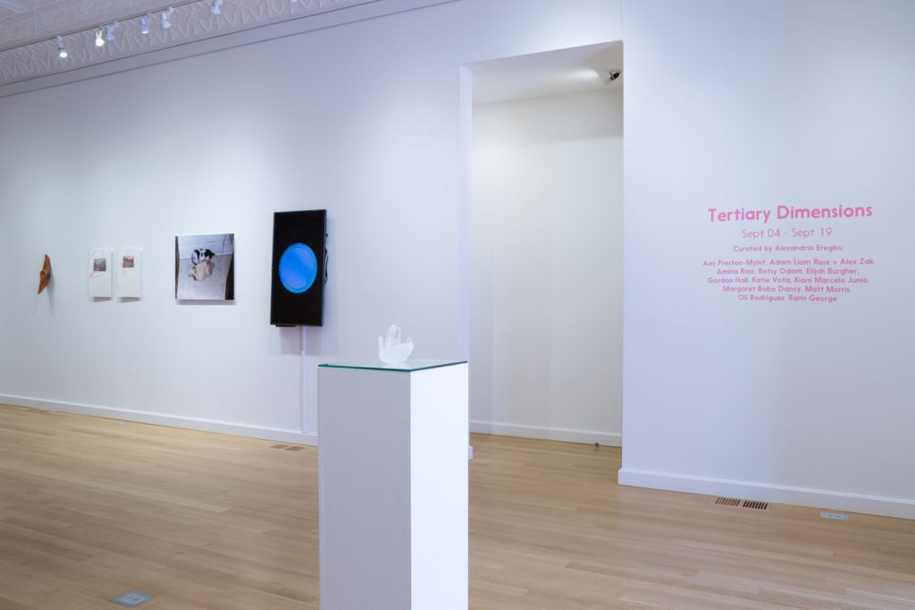 Tertiary Dimensions, 2014. Curated by Alexandria Eregbu. Installation view, Sector 2337, Chicago. Photo by Clare Britt.