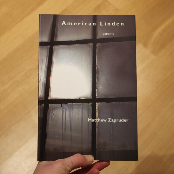 American Linden