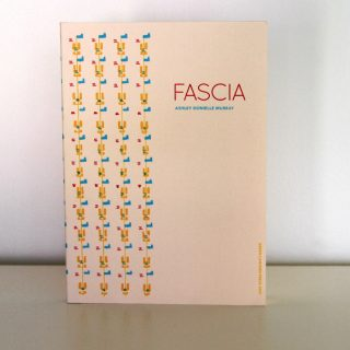 fascia-cover