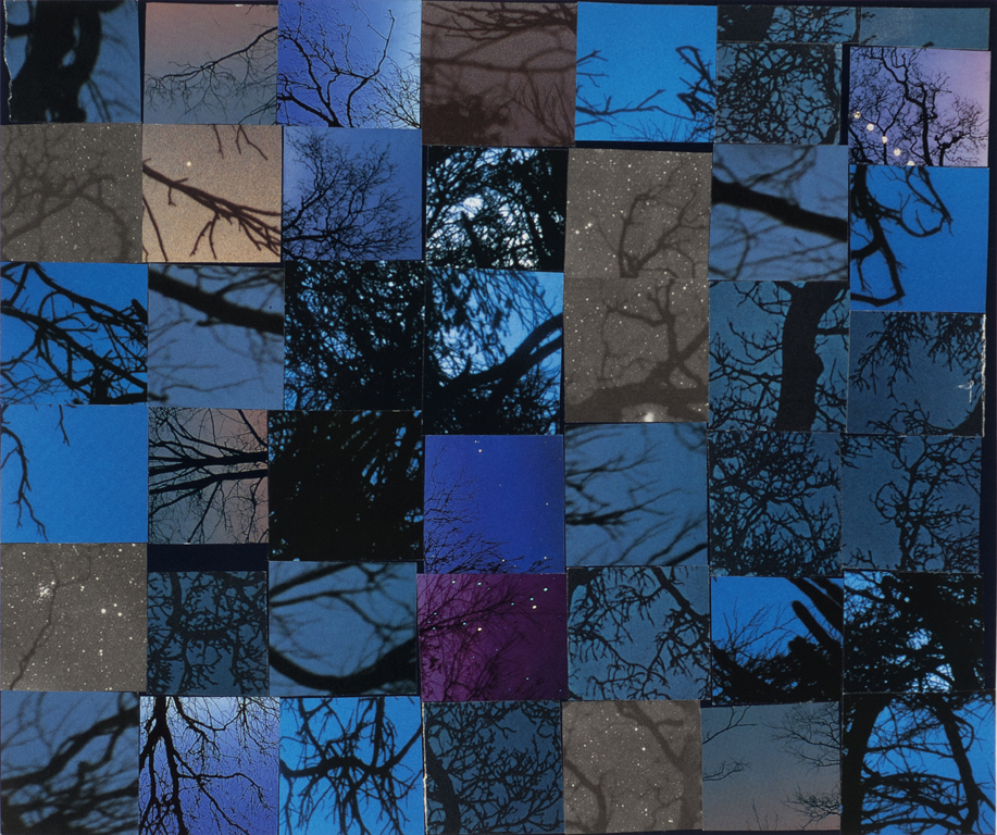 Carrie Gundersdorf, Nightsky and branches 2012. Found images/paper 10 x 12""